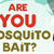 Are You Mosquito Bait? [Infographic]