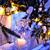 7 Ways to Illuminate Your Yard This Winter