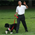 First Dogs: True Stories of Presidential Dogs