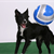 How to Play Soccer With Your Dog