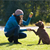 13 Easy Tricks to Teach Your Dog Commands