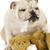 Top 10 Dog Behavior Problems