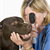 How to Prevent 5 Common Dog Illnesses