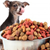 Size up Your Dog's Food Needs