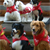 Dog Scouts of America Rewards Canines