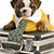 Business Management -- the Dog Way