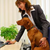 Take Your Dog to Work, Improve Productivity