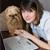 Social Media Boosts Dog Adoption Efforts