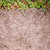 Easy Lawn Renovation Tips to Get Your Yard in Shape