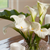 Welcome your guests this season with fragrant floral d�cor.