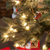 Both faux and real trees have their upsides. Here�s what to consider.