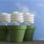 How Does It Work? Energy-efficient Lightbulbs