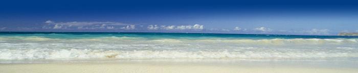 Beach header image